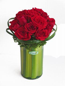 Rosas para la mejor